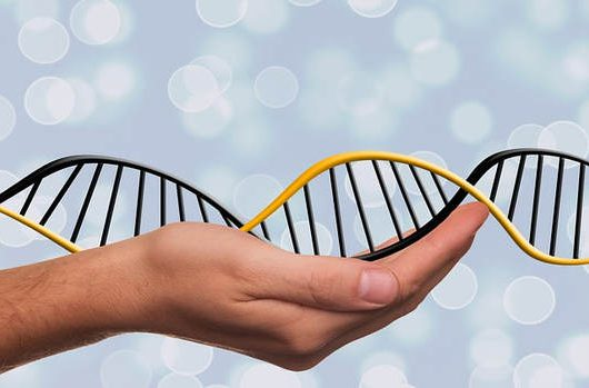 Epigenetics – You can re-write your future!