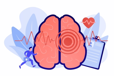 Gut microbes may improve stroke recovery