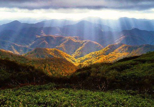 The anti-inflammatory effects of a sense of awe and wonder